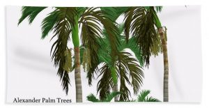 Palm Tree Beach Towels